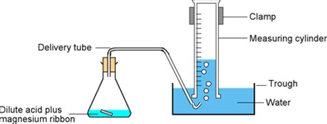 Rate equation between magnesium and hydrochloric acid